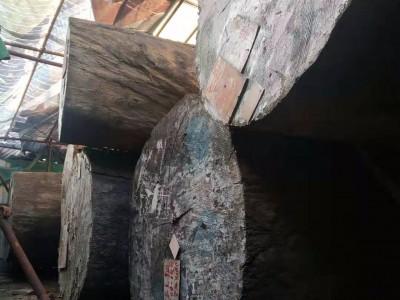 巴花原木直径100-200cm对外出售