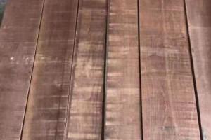 天津进口美国黑胡桃木板材价格多少钱一立方米?