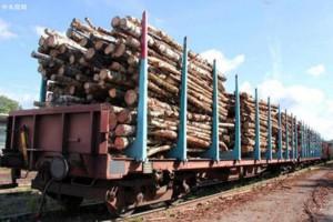 2021物流运输提前停运,木材商最好提前准备