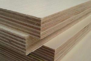 沭阳汤涧:加快推进木材行业转型升级