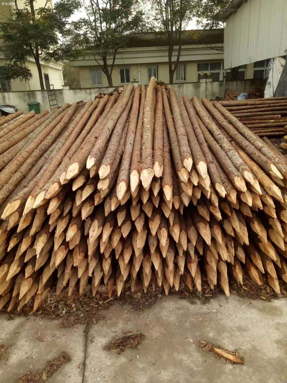 上海杉木桩批发价格多少钱一根