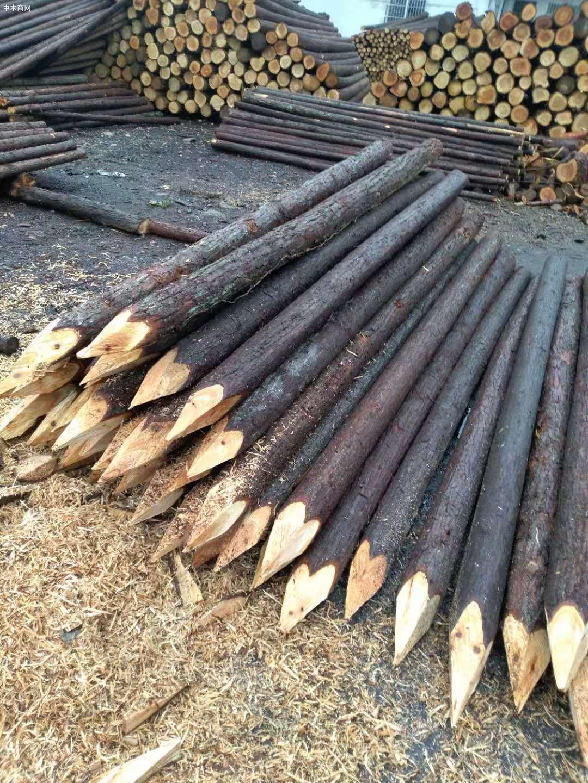 杉木做木桩会腐烂发霉吗及杉木桩防腐处理方法价格