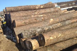 俄罗斯原木紧缺,国内市场俄材库存正在进一步减少