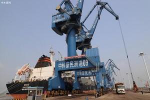 新民洲港2020年进口木材近370万立方米再创新高