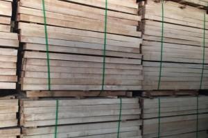 橡胶木运输航线有所改变