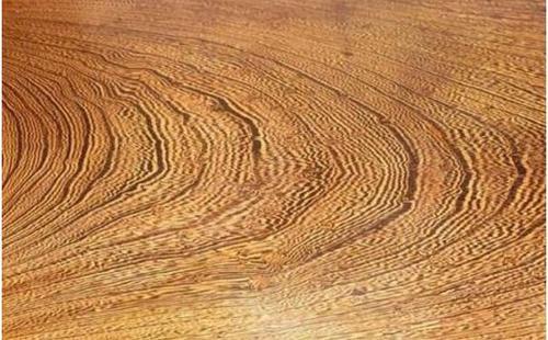 鸡翅木是什么树的木头厂家