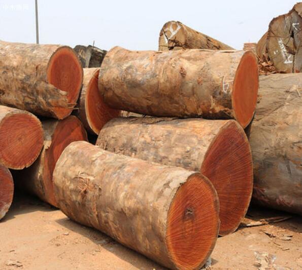 北欧硬木接近五年来最高价
