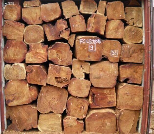非洲缅茄木原木价格行情