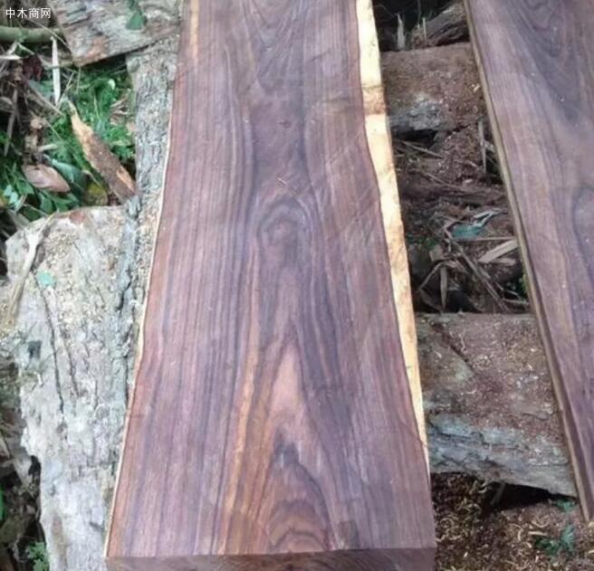 酸枝是什么木头?红木的红酸枝与黑酸枝价格排名,学名及俗称对照产品