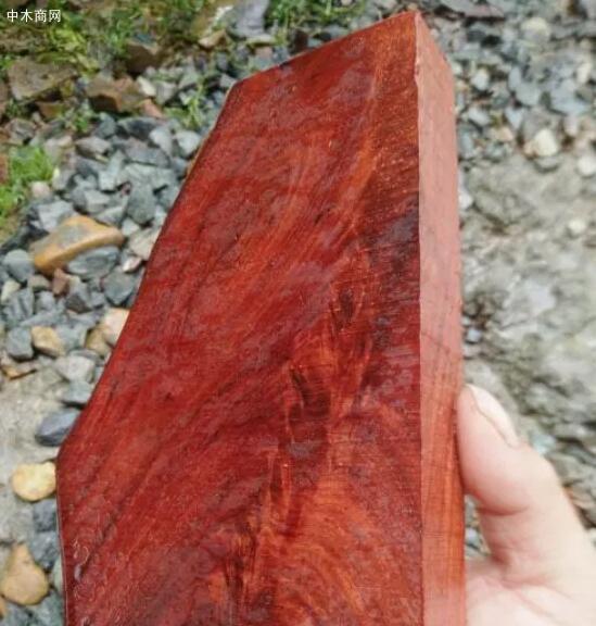 酸枝是什么木头?红木的红酸枝与黑酸枝价格排名,学名及俗称对照效果图