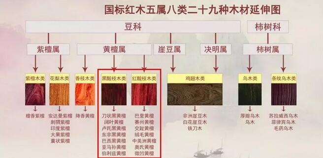 酸枝是什么木头?红木的红酸枝与黑酸枝价格排名,学名及俗称对照厂家