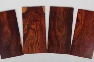 酸枝是什么木头?红木的红酸枝与黑酸枝价格排名,学名及俗称对照?