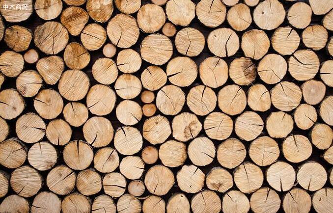 木材种类有什么意思