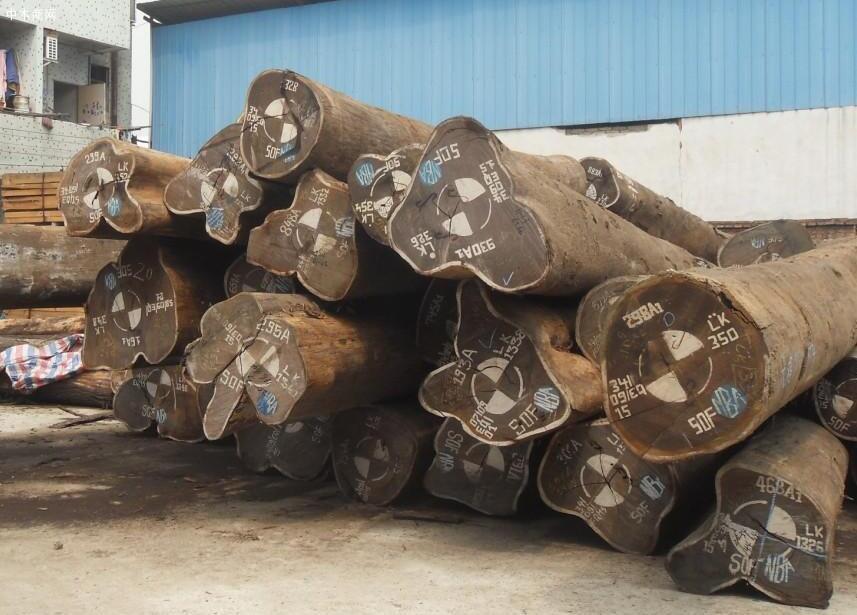 家具木材种类及价格行情图片