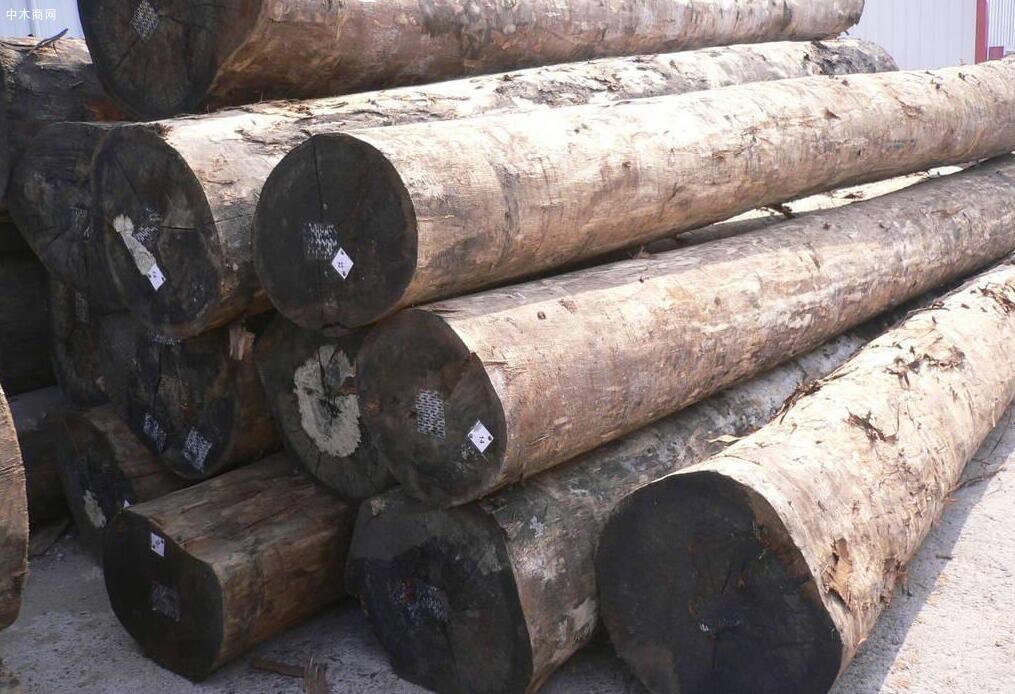 巴西木材及木制品出口急剧上升