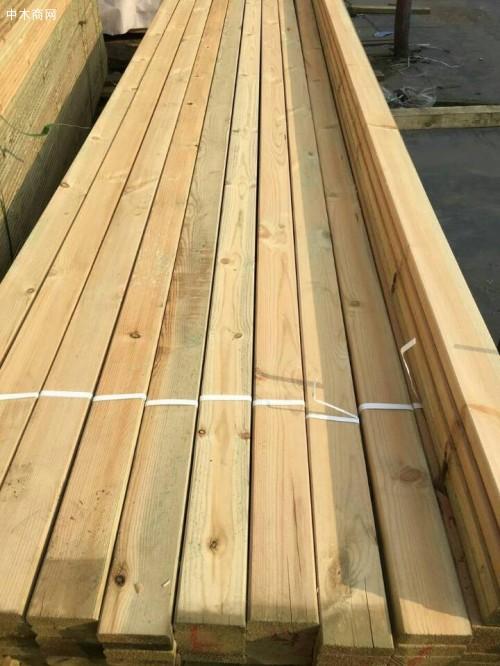 樟子松为何能做防腐木材图片