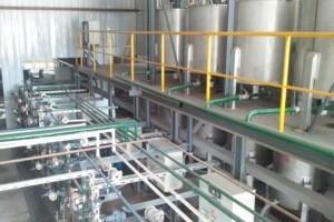 全国首条大型自动化连续平压高端胶合板推进