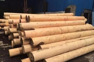 俄罗斯将提高木材附加值再出口