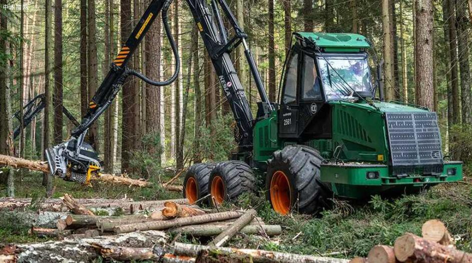 俄罗斯工业发展基金已提供超过130亿卢布贷款支持木材工业发展