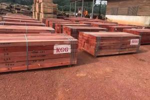 非洲红花梨木板材源头直供
