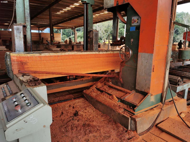 非洲红花梨木板材源头直供厂家