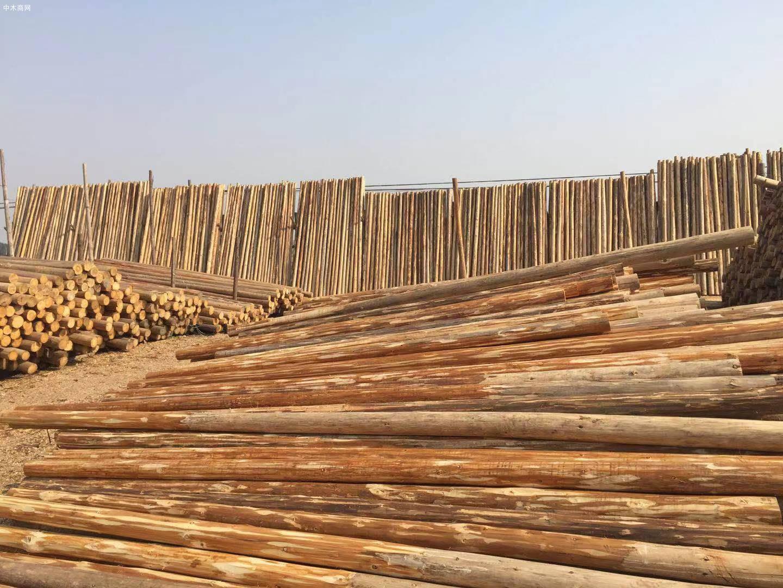 太仓主要码头木材库存合计不足120万方