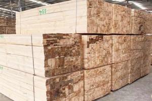 太仓创秋木业铁杉,花旗建筑木方均可按客户要求定制生产