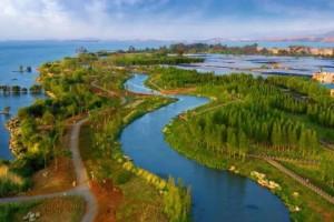 """""""十四五""""昆明市林草产业总产值将达320亿元"""