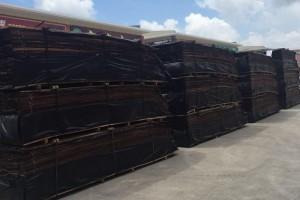 秘鲁卡亚俄港离岸木皮价格行情_2021年03月02日
