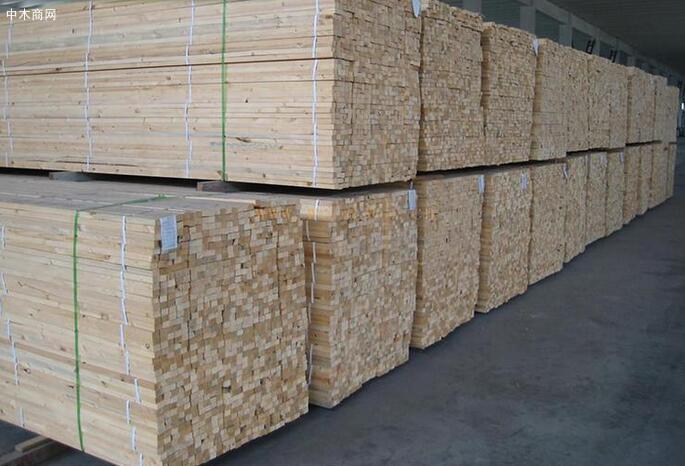 辐射松建筑木方有哪些好处及多少钱一立方厂家