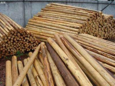 杉木领条原木批发