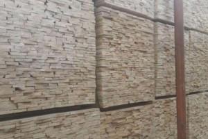 东莞吉龙木材市场桦木锯材价格行情_2021年3月8日