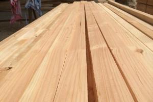 春节后新西兰辐射松木价格仍保持上涨