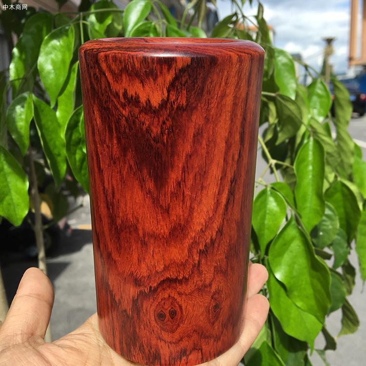 红酸枝木功效以及特点介绍图片
