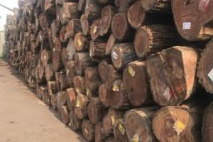 关于当前木材市场价格波动原因分析及建议