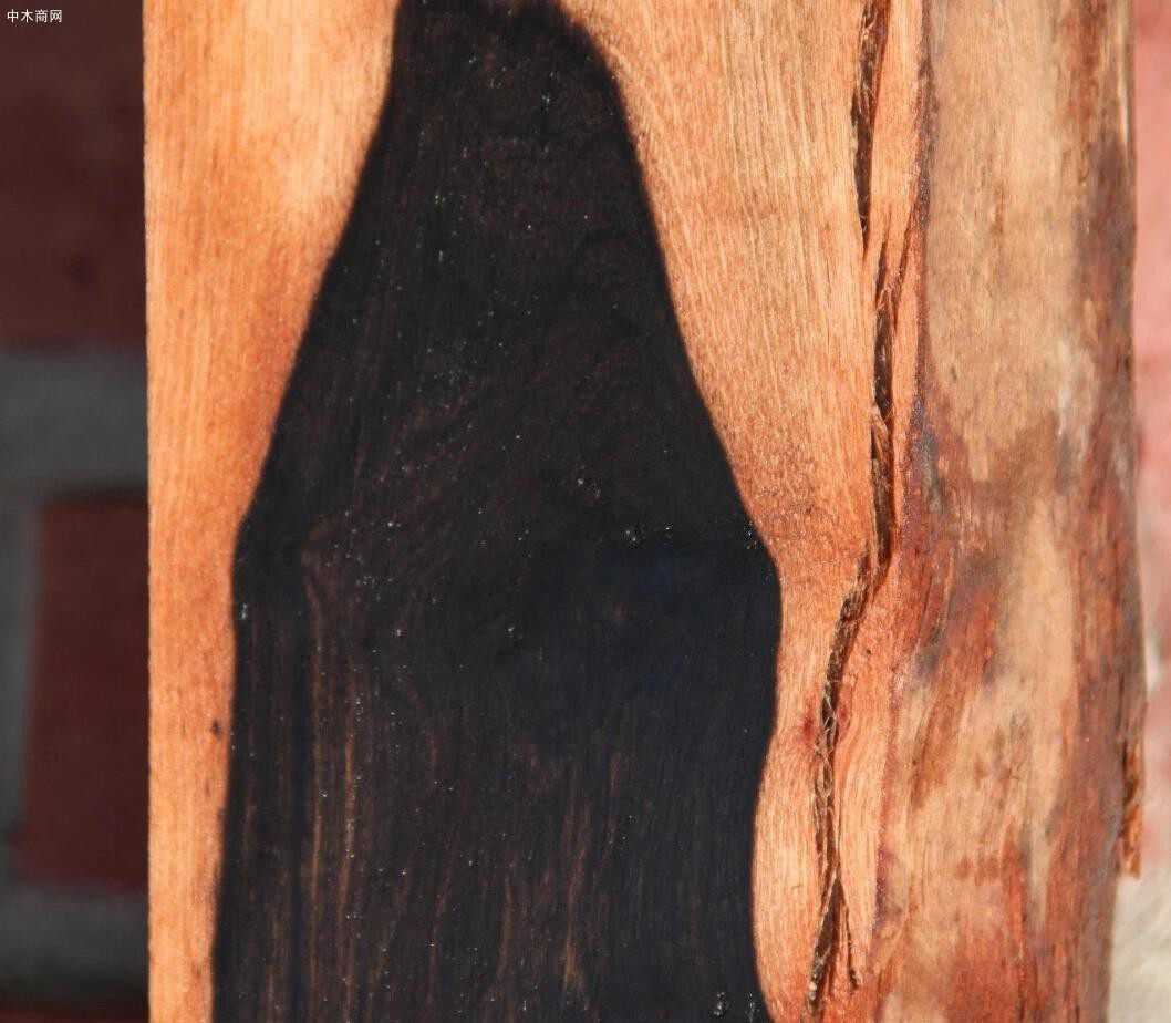 缅甸乌木是国际紫檀红木品种吗及刀状黑黄檀与阔叶黄檀区别有哪些