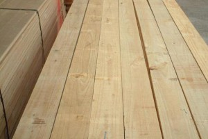 太仓辐射松木建筑木方图片