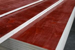 宜昌建筑模板批发市场高清图片