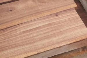 河南榆木板材有什么优点及价格?