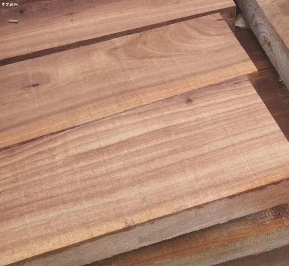 临颍榆木板材高清图片报价