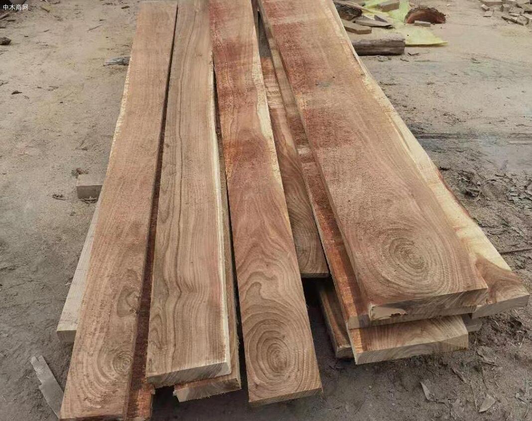 临颍榆木板材高清图片厂家