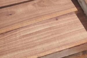 临颍榆木板材厂家批发价格