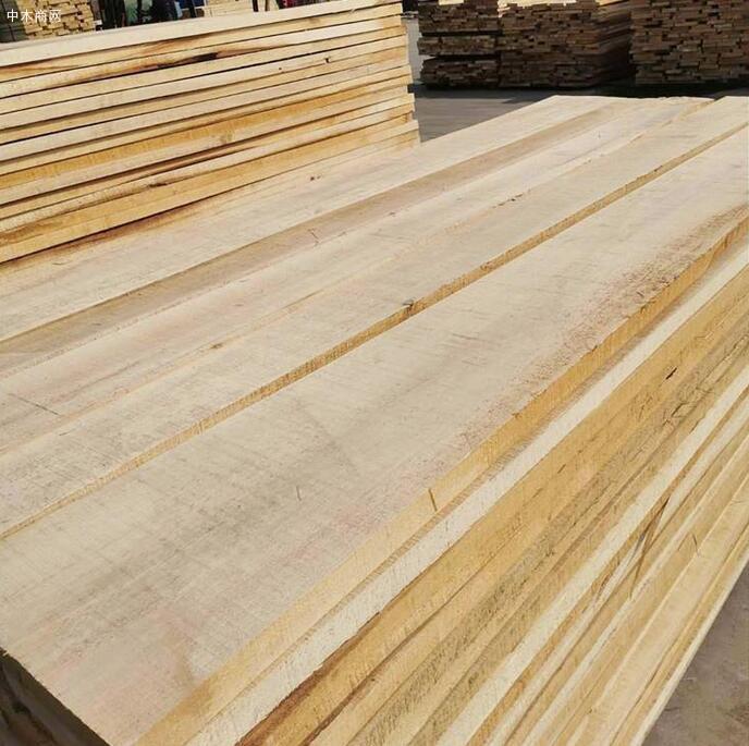 临颍白杨木板材价格有多贵