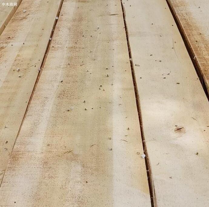 临颍白杨木板材价格有多贵品牌