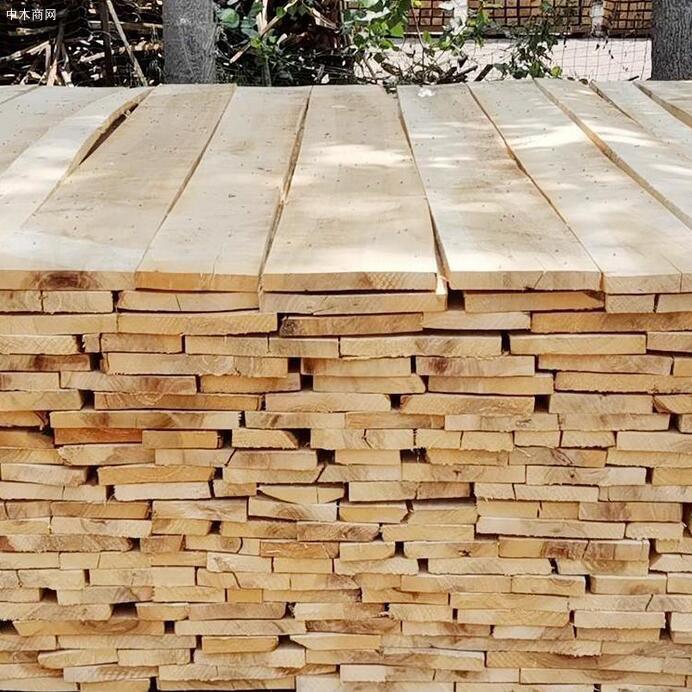 临颍白杨木板材价格有多贵厂家