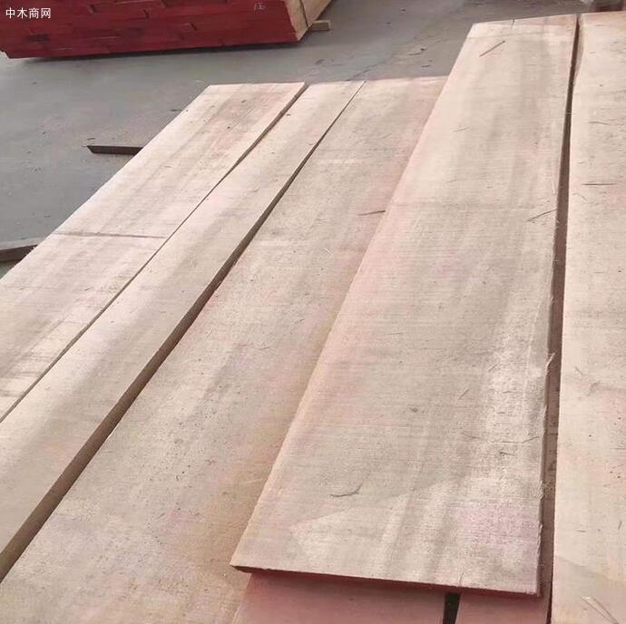 临颍白杨木板材价格有多贵图片