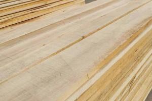 临颍白杨木烘干板材高清图片