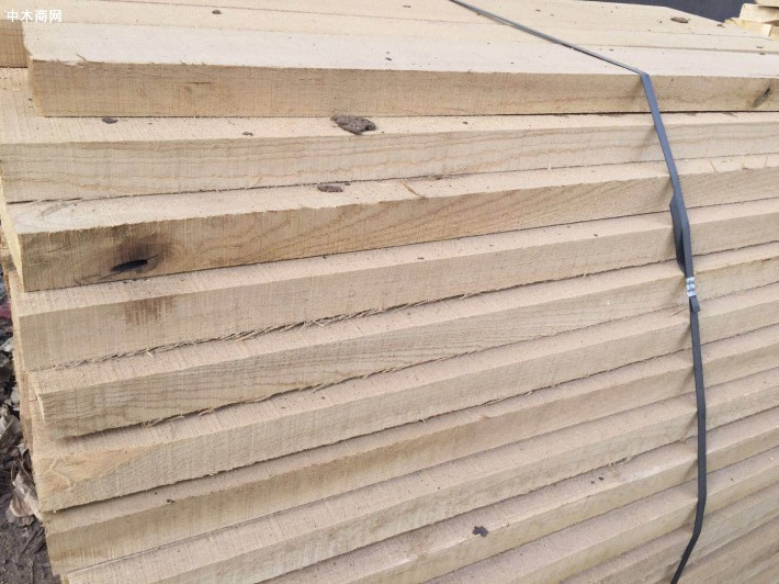 临颍国产白蜡木(白椿木)板材价格多少钱一立方米厂家