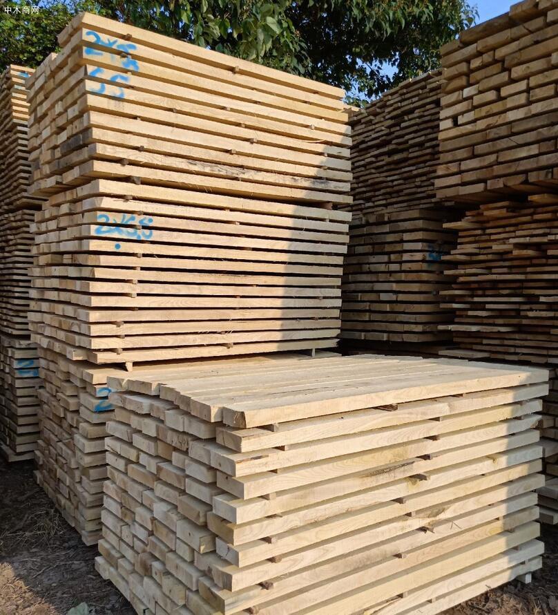 国产白蜡木(白椿木)板材家具的优缺点及价格多少钱一立方米品牌