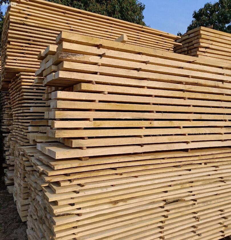 国产白蜡木(白椿木)板材家具的优缺点及价格多少钱一立方米批发